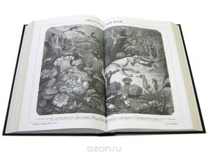 Энциклопедический словарь Брокгауза и Ефрона (комплект из 86 томов: 82 основных + 4 дополнительных)